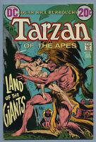 Tarzan #211 1972 [Edgar Rice Burroughs] Joe Kubert - DC A