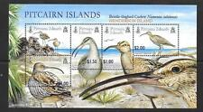 PITCAIRN ISLANDS SGMS699 2005 CURLEW MNH