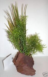 """RockGarden 6"""" Assorted Small Plants LAVA BROWN Base Fish Tank"""