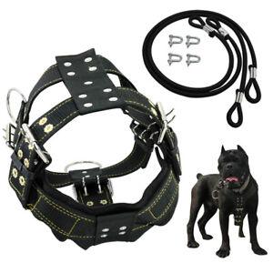 Pettorina per cani K9 Taglia Grande imbottita Regolabile Imbragature Pitbull M/L