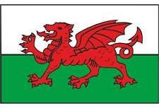 Welsh Dragon Flag Car Bike Exterior Vinyl Stickers Wales Decals  204mm x 152mm