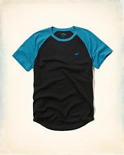 HOLLISTER Must-Have Colorblock Raglan T-Shirt Medium **Brand New w/ Tags** Tee