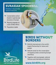 RSPB Pin Badge | Eurasian spoonbill BirdLife International (01406)
