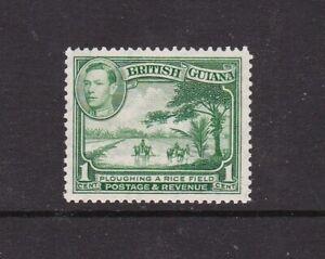 BRITISH GUIANA 1938 KGVI 1c YELLOW-GREEN LIGHTLY HINGED MINT