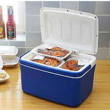 8L Car Mini Fridge Portable Thermoelectric Cooler Warmer Travel Refrigerator Hot