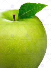 PHOTOGRAPHY COMPOSITION FOOD FRUIT APPLE GREEN LEAF MACRO PRINT POSTER MP3387B