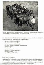 #11193 Trakehner Pferde einst und jetzt Hengste Pferdezucht Trakehnen 132 Fotos