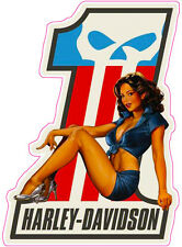 """HD Pin up Girl Version 1 is 3"""" x 6"""" in size Free Shipping Free Shipping"""