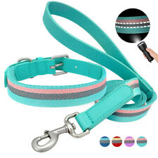 Adjustable Dog Collar Nylon Webbing With Leash Reflective for Small Medium Dogs