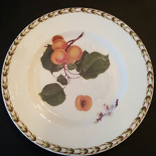 ROSINA-QUEEN'S HOOKERS FRUIT Bone China APRICOT BREAD & BUTTER  (R.H.S.) NEW