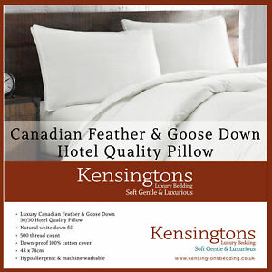 Kensingtons Canadian Goose Feather & Down Luxury Pillows 1300G Hotel Quality