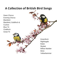 BRITISH BIRDSONG. Individual Birds & Groups. BRINGING OUTSIDE, INSIDE - THERAPY
