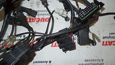 Ducati ST/ST4 4  Kabelbaum wiring loom Wire cable harness AR-231