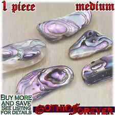 1 Medium 20mm Free Ship Tumbled Gem Stone Crystal Natural - Abalone Shell