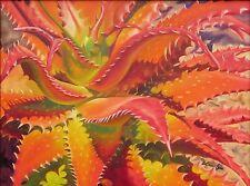 "Collectible Original Oil Painting 24x18 Aloe Vera Plant ""Aloe Busei"" Framed"