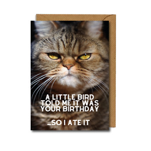 FUNNY Birthday CAT Card Isolation for Dad Mum Friend Sister Brother ate it