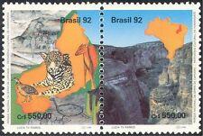 Brasil 1992 Wild Cat/Pájaro/animales/Rock Art/Naturaleza/Vida Salvaje/Parque S/T pr (b8318)