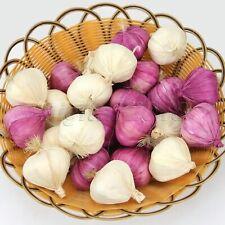 10pcs Artificial Garlic Realistic Vegetables Fruits Props Home Party Decoration
