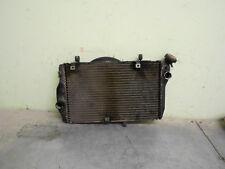 honda  blackbird  radiator (2003)