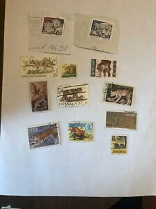 Postage stamps used wild cats 12 stamps