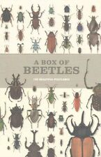 A Box of Beetles 100 Beautiful Postcards by Patrice Bouchard 9781782402381
