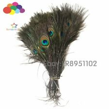 Wholesale 100pcs Natural Peacock Eye Tail Feathers about 25-30 cm for Earring