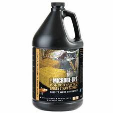 Microbe-Lift Pond Barley Straw Extract 1 Gallon  MLCBSEG4