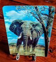 Vintage 3D LENTICULAR POSTCARD SUPER XOGRAPH AFRICAN ELEPHANT