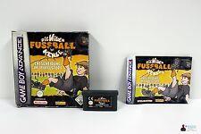 Nintendo GameBoy Advance, DIE WILDEN FUSSBALL KERLE: Entscheidung im Teufelstopf