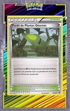 Forêt de Plantes Géantes - XY7 -74/98 -Carte Pokemon Neuve Française