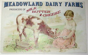 "Rustic Advertising Tin Sign ""Meadowland Dairy Farms"" Vintage Farmhouse Decor"