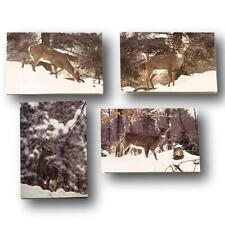 Deer Hunter Greeting Cards - Whitetail Deer Stationary Note Cards - 4 Winter Sce
