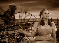 Wizard Of OZ Dorothy And Toto Sepia 8x10 Glossy Photo