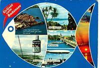 Grüße vom Bodensee  ,1979 gelaufene Ansichtskarte