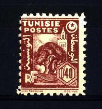 TUNISIA - 1944-1945 - Moschea ed ulivo