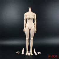 1/6 Scale Pale Large Bust Female Body N001 12'' Figure Model Fit ZC Head Toys
