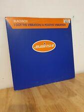 Blackbox I Got The Vibration 12 Inch Vinyl Dance Record