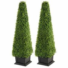 Boxwood Outdoors Dried & Artificial Flowers