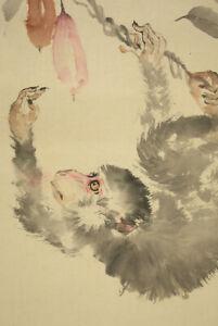 "掛軸1967 JAPANESE HANGING SCROLL : KAZAN ""Monkey on Tree""  @m838"