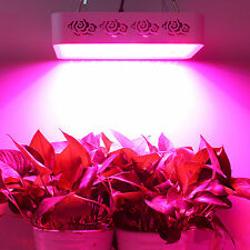 HOT 300W Led Grow Light full spectrum panel Real IR Indoor Medical Plants Growth