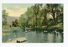 Potomac River Island Cumberland Md Antique Pc Rowboat—Dealer Sample 1910s