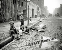 Photograph of a  Dead Horse & Kids Playing New York Year 1903  8x10