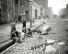 Photograph Vintage New York Street / Dead Horse & Kids Playing 1905c  8x10