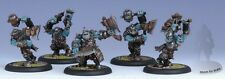 BNIB Warmachine Hordes - Trollblood Champions (5)