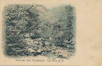 WEIRS NH–Scene near Lake Winnipesaukee–Hand Colored Postcard-White Mountains–udb