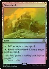 Wasteland - Foil 248/249 Near Mint MTG Eternal Masters EMA