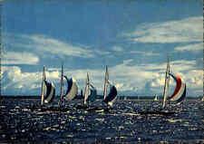 Segeln Schiffe Boote Segelsport ~1960/70 Segelregatta bei KIEL, Kieler Woche AK