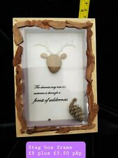 Handcrafted Stag, Box, Frame