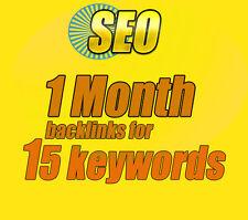 SEO 1 Month 15 Keywords Backlinks