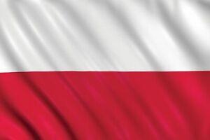 LARGE 5ft x 3ft Poland Polish Polska Flag Football Olympic Fans Supporter Europe